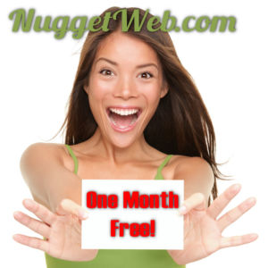 Free Month Hosting for Referral - NuggetWeb.com