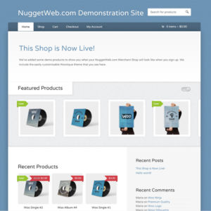 NuggetWeb.com Website Demonstration - Wootique Theme