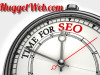 Search Engines: How Long Does it Take?