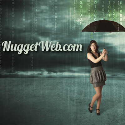 Protect Your Online Privacy - NuggetWeb.com